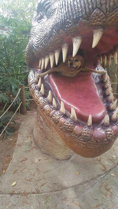 Took doggos to Dinosaur World. I think they had a blast.