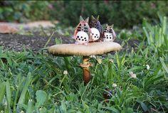Where's Totoro by acornbud