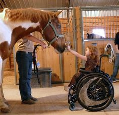 Love this! In the world of therapeutic riding, the horses truly DO become therapists, and they accomplish incredible feats.