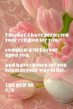 The noble Quran 5 : 3 Quran Verses, Quran Quotes, Faith Quotes, Islamic Qoutes, Religious Quotes, Quran Arabic, Noble Quran, All About Islam, Islam Religion
