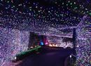 Australian Family Sets New Record For Christmas Light Display.Over one million lights