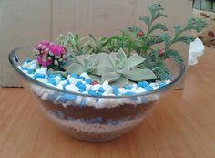 Cam ile bitkileri birleştiriyoruz..