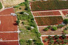 Hvar, UNESCO protected plain