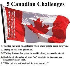 Can you relate? #meanwhileincanada #canada #Canadian #funnymemes Canadian Memes, Canadian Things, I Am Canadian, Canadian Humour, Canadian Girls, Canada Jokes, Canada Funny, Canada Eh, Stereotypes Funny