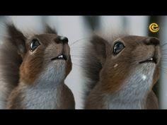 Squirrel's journey – Winter Efteling Movie Talk, Short Film, Winter Wonderland, Squirrel, Bloom, Cute, Parks, Youtube, Education