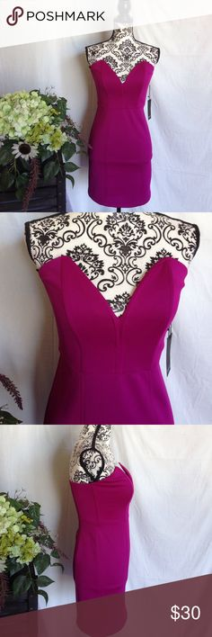 NWT Magenta Strapless Mini Dress Size medium. New with tags. Strapless. Zips up back. Magenta. No flaws. Free gift with purchase. Dresses Mini
