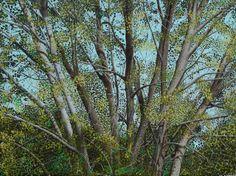 L'albero delle fate, olio su tela 30 x 40 cm 2014