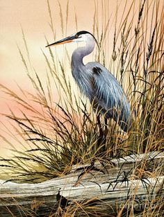 James Williamson Ferndale, WA-Heron Sunset Painting