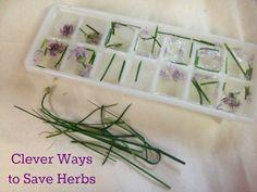 Conserva hierbas congelándolas dentro de cubos de hielo. | 30 trucos de jardinería extremadamente ingeniosos