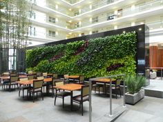 Embassy Suites living wall by GSky as featured on the Hatch Blog - LOCALLY MANUFACTURED MATERIALS: GREEN ROOFS, LIVING WALLS & FRAMES