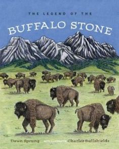 Buy The Legend of the Buffalo Stone by Charles Bullshields, Dawn Sprung and Read this Book on Kobo's Free Apps. Discover Kobo's Vast Collection of Ebooks and Audiobooks Today - Over 4 Million Titles! University Of Calgary, Winter Storm, 12 Year Old, Rock Art, Social Studies, Buffalo, Dawn, Love Her, The Past