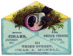 Victorian Advertising - Pink Bird in Aqua Envelope - The Graphics Fairy