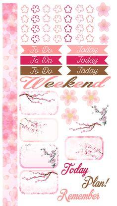 Sakura Sticker kit