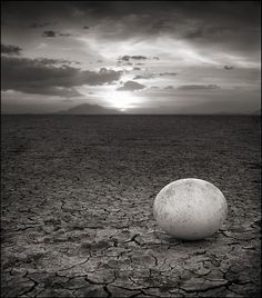 by Nick Brandt from Flavorwire