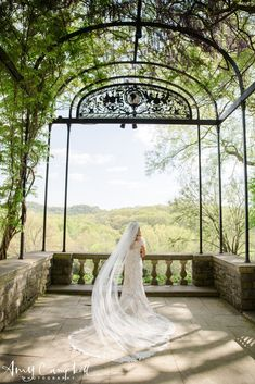 Cheekwood Gardens - Nashville - Amy Campbell Photography - Wedding Photography