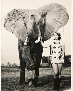 Circus Performer with elephant.  please stop the abuse of circus animals by boycotting current circuses that use animals in their acts