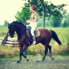 My first horse zamzam ... you learned me the base of a whole new chapter missing you