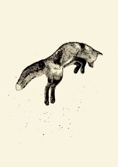 Fox Ink Stretched Canvas by Cedric S Touati | Society6