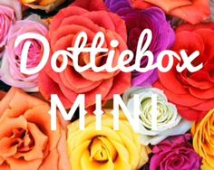 Dottiebox MINI... independent artist products, samples --lots of etsy shop owners!