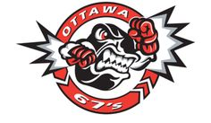 If you love hockey - you must check out the Ottawa 67's.