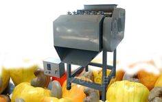 Professional Cashew Nuts Hulling Equipment Sale|Cashew Nuts Sheller Machine