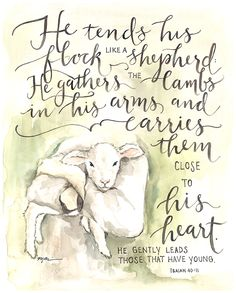 He tends his flock like a shepherd, He gathers his lambs in his arms and carries them close to His heart.