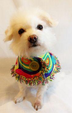 60s Dog Poncho-Dog Coat-Dog Cape-Dog Costume-Pet Clothing-Dog