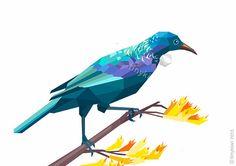 Tui, Nieuw-Zeeland Vogel, geometrische druk, Originele illustratie, animal print, Minimal art, Kunst van de Muur