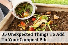 Starting a compost pile is one of the best things you can do for your garden and the environment. Every piece of garbage that goes into the pile instead of the dumpster saves valuable landfill space and adds much needed nutrients to your soil.