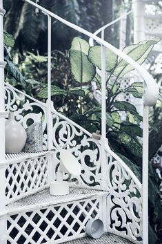 Botanic /// Line KLEIN STUDIO