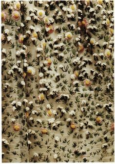 Elaborate floral embroidery - detail of Christian Dior 'Vilmorin' dress ca.1952