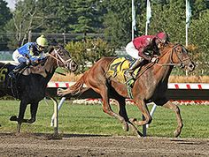 Delightful Joy Wins Stakes Debut at Monmouth. 8/22/15