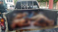 Polícia de MT matou seis suspeitos de participarem de assalto