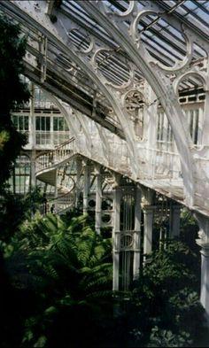 Kew Garden Invernaderos Londres