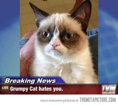 Breaking Grumpy News…