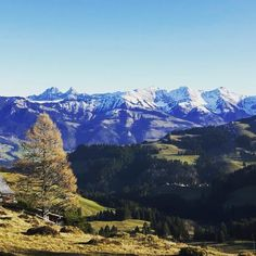 La Gruyère, Switzerland FRIBOURG REGION www.fribourgregion.ch #hiking #nature