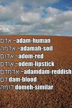 The main benefit of learning a second language is that of being able to communicate with others in their native language. Hebrew is considered to be one of the most difficult languages to learn and requires a lot of study but once mas Biblical Hebrew, Hebrew Words, Hebrew Names, Learn Hebrew Online, Hebrew School, Jewish School, Learning A Second Language, Root Words, Word Study