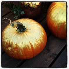 Painted gold ombré pumpkins