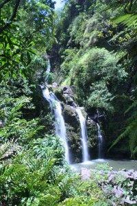 Upper Waikani Falls- Road to Hana Maui (three bears)