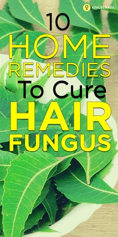 Any part of the human body can be the comfortable breeding ground of fungus, for example, the scalp, feet, skin etc. Scalp Fungus Treatment, Nail Fungus, Hair Treatments, Hair Remedies For Growth, Hair Loss Remedies, Hair, Fungi, Recipes, Health