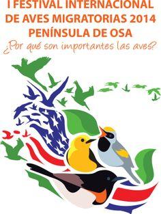 Evento de DIAM Festival Internacional de Aves Migratorias Península de Osa.  IMBD event International Festival of Migratory Birds Osa Peninsula.  #BirdDay