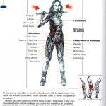 Guía de abdominales. Muy buena.