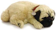Adopteer je eigen huisdier. De Perfect Petzzz zien eruit als echte huisdieren, door hun zachte vacht en doordat ze lijken te ademen. Ze worden geleverd met een mandje, borstel en certificaat van adoptie. De Perfect Petzzz maken geen geluid en hebben een afmeting van 27 x 17 x 10 cm. Exclusief 1 D batterij. Er zijn verschillende Perfect Petzzz pups en katten verkrijgbaar.   Afmeting: volgt later.. - Perfect Petzzz soft Pug