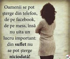 Internet, Ecards, Alba, Quotes, E Cards, Quotations, Quote, Shut Up Quotes