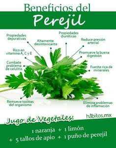 #hábitos.mx  Perejil #remediosnaturales