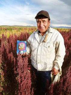 Narciso is one of the many people who grow and harvest our organic quinoa in Peru which goes into the Quinola Express products. A quick tasty and organic meal or snack! #OrganicSeptember #Quinoa