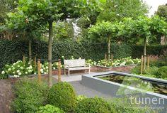 Rustieke symmetrische tuin - Vissertuinen