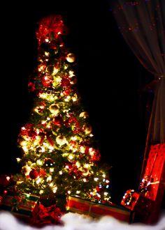 #christmas #jamiewoganedwards #photography #christmastree #jamiecreates1