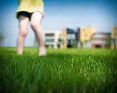 Summer freedom! - kinder-lifestyle fotografie - children lifestyle photography - via http://www.7dwarfs.nl