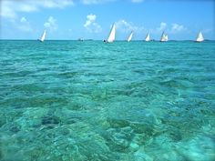 """""""Staniel Cay in 5 Words"""" A Great Article About The Exuma Cays By Angie Orth"""
